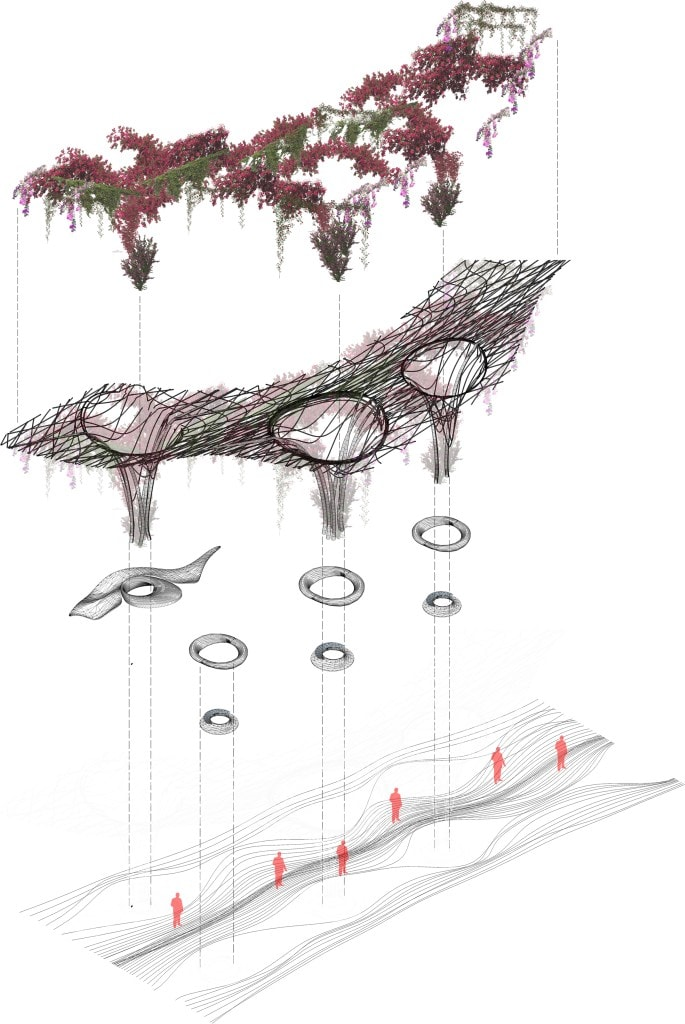 15_Competition_Hypertree_Planimetry_Kevin Abanto