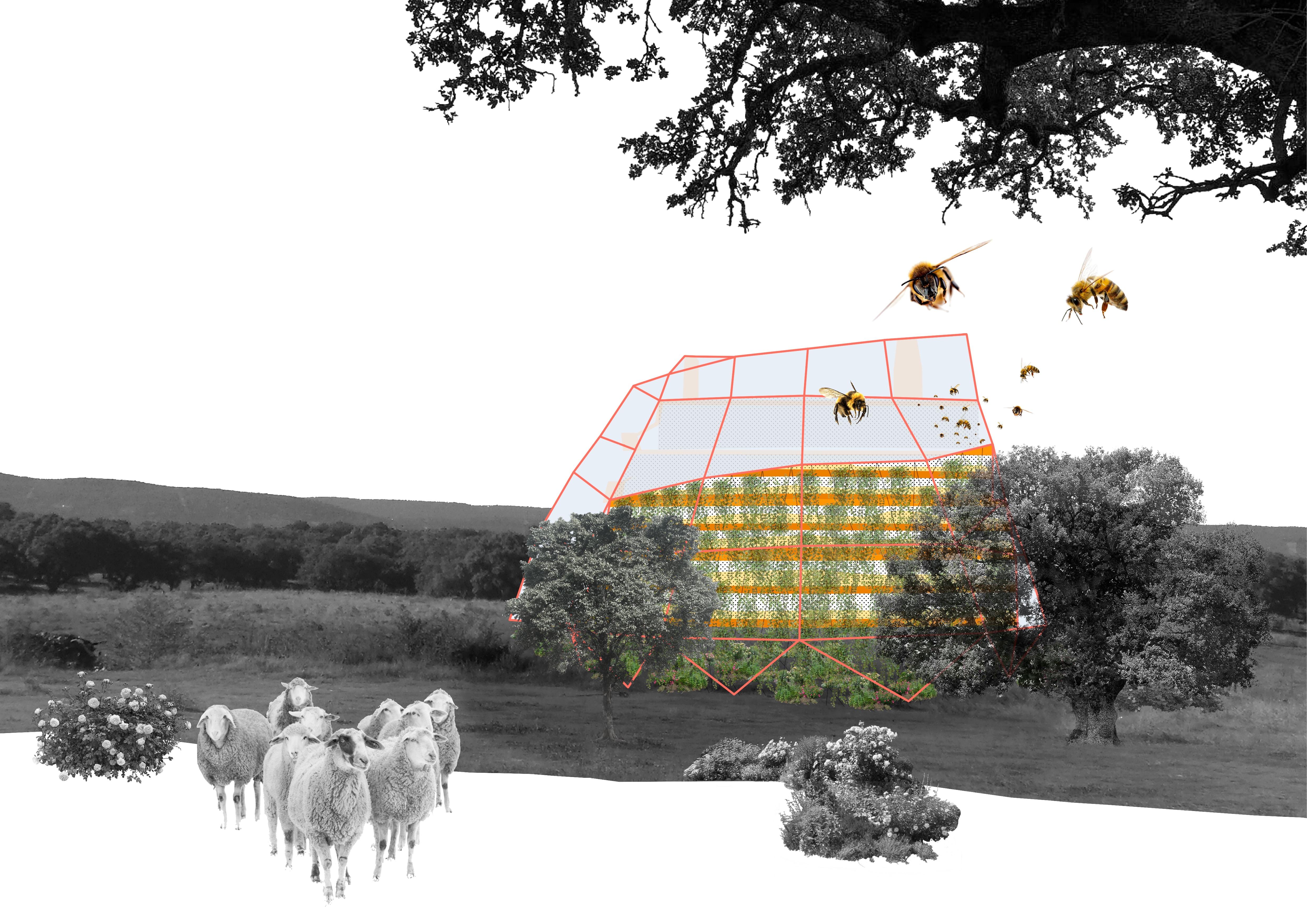 14_Landscape Reference Collage 3