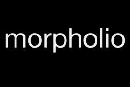 "<span style=""color: #23e286;"">Morpholio</span>"